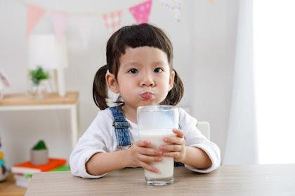 Pentingnya Susu Pertumbuhan Anak Usia 2 Tahun