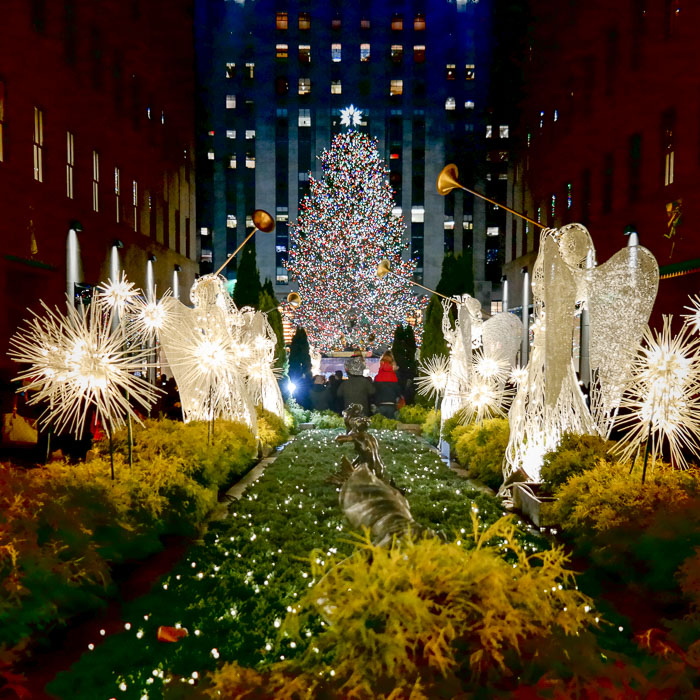 Image gallery new york christmas nyc for Top 10 things to do with kids in nyc