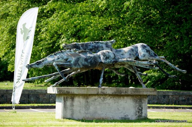 wyścigi konne tor wyścigów konnych na Służewcu Ursynów konie