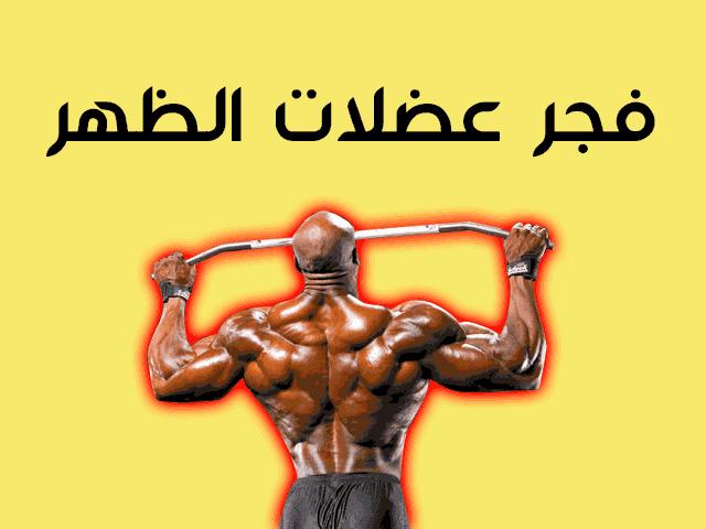 تضخيم عضلات الظهر