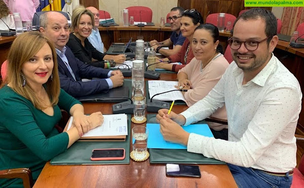 CC en el Cabildo pide que se convoque urgentemente la Mesa Insular de Energía para estudiar la nueva planificación energética presentada por el Estado