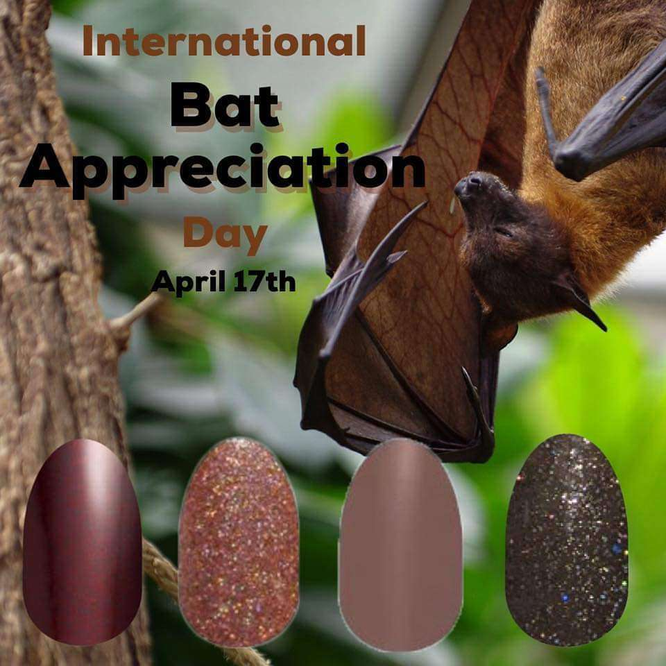 International Bat Appreciation Day Wishes Awesome Picture