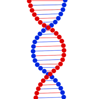 Pola pola Hereditas dalam Ilmu Genetika