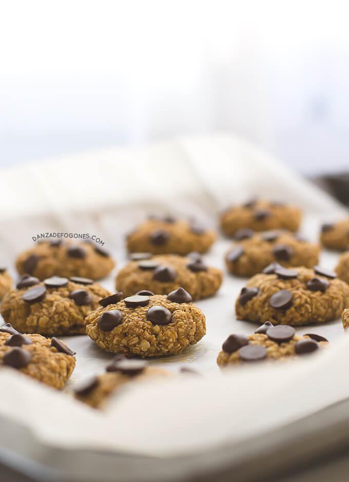 Vegan Oatmeal Cookies | danceofstoves.com