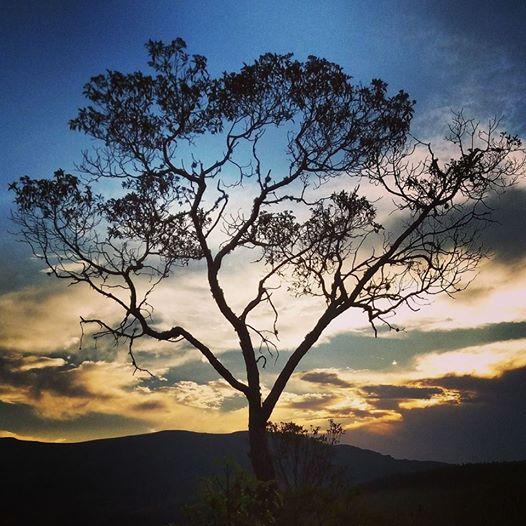 #Chapada #estradareal #turismoemMinas #PertinhodeBH #natureza #naturezacomcriança #ouropreto #feriado #finaldesemanaemfamilia #pordosol