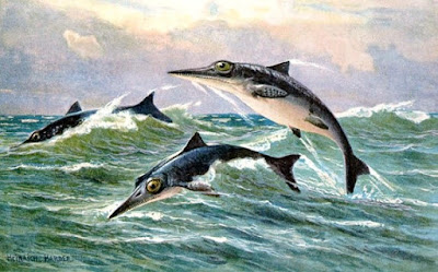 Ichthyosaurs are being icky to evolution. Again. This time, well-preserved soft tissues indicate rapid burial by the recent global Genesis Flood.