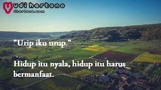 30+ Kata Bijak Bahasa Jawa dan Artinya