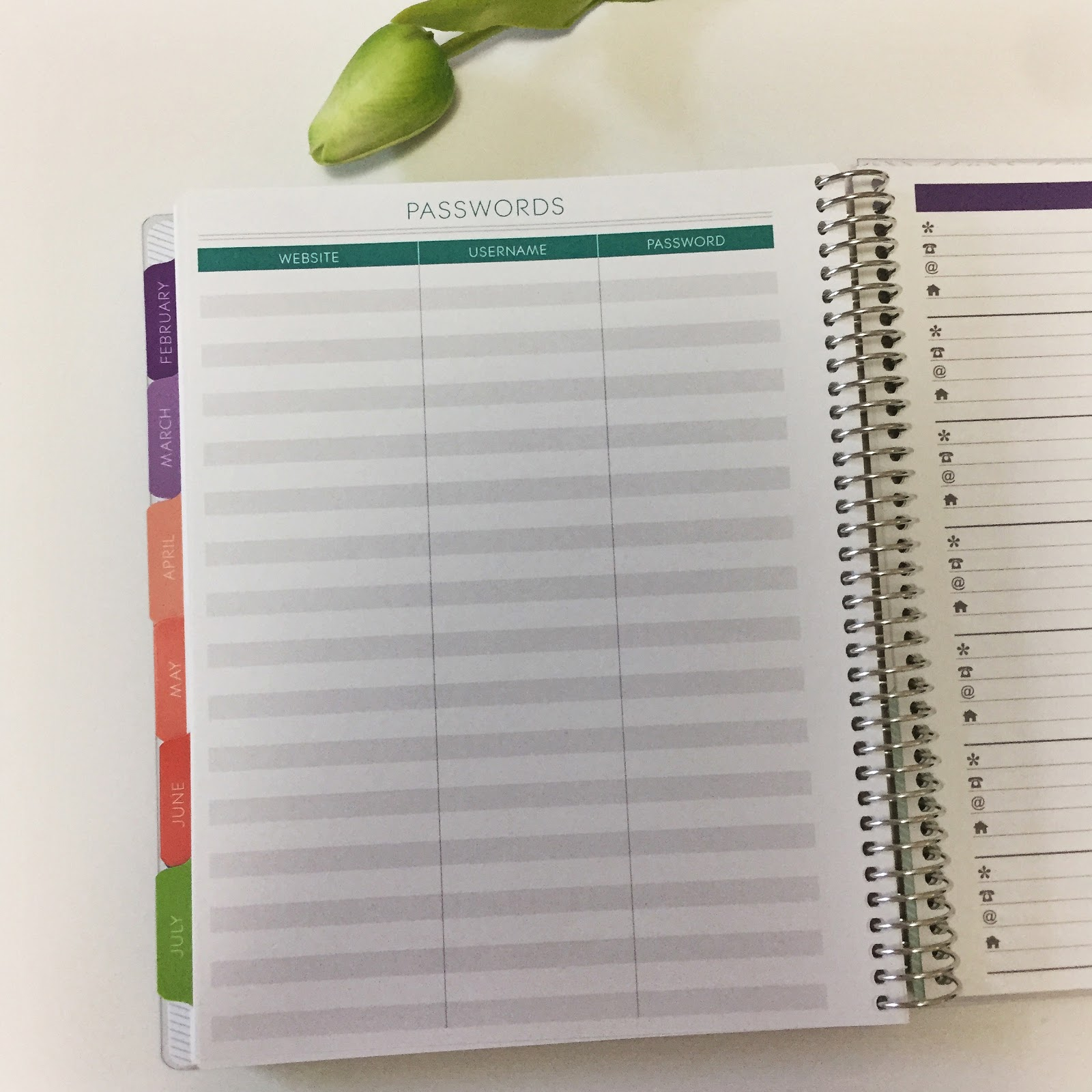 plum paper offers tons of amazing add ons to your planner to make it exactly what you wantneed in my first planner i got the monthly to do lists and the