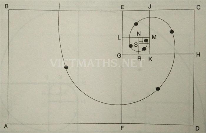 Hình chữ nhật vàng trong Góc vẽ đẹp toán học số 2