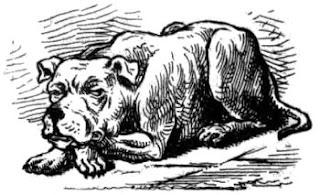 Queensland Figaro, 17 February 1883
