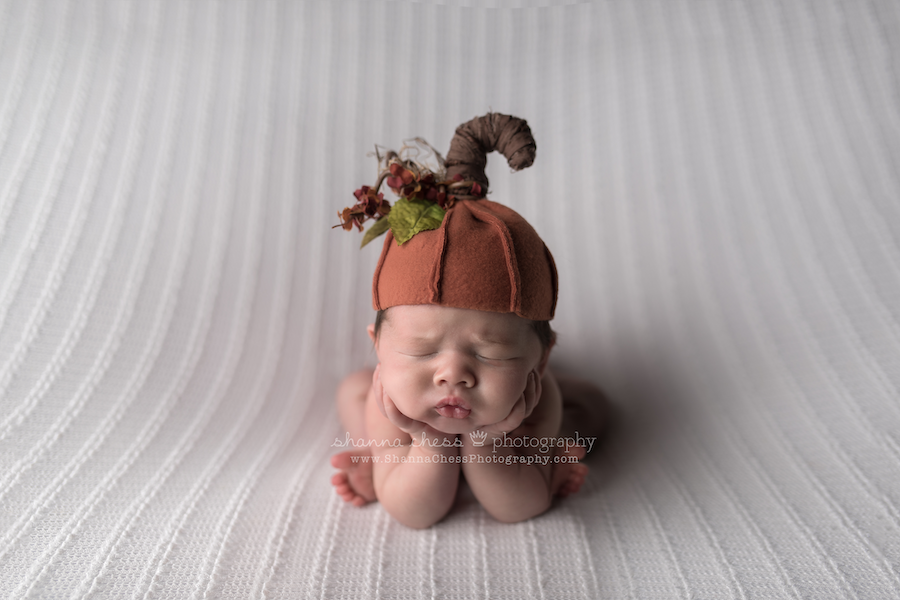eugene oregon newborn photos