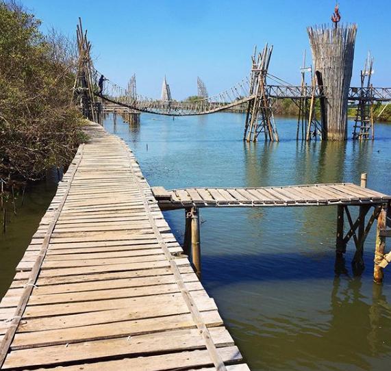 objek wisata Hutan Mangrove Kulon Progo