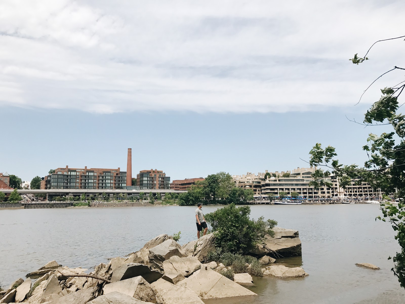 Potomac River from Theodore Roosevelt Island Park | | A Weekend in DC
