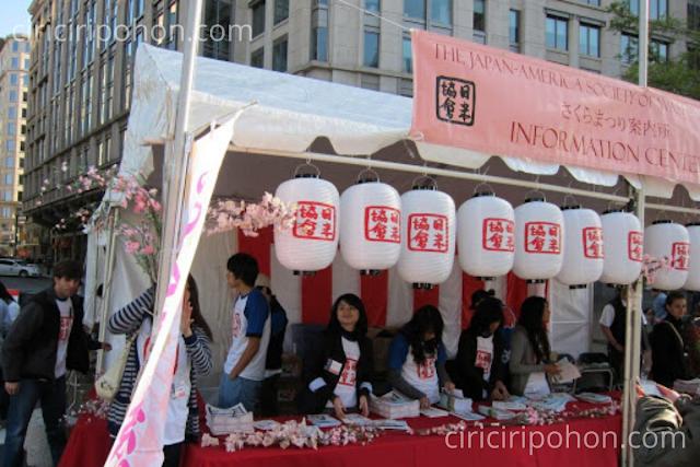 Ciri Ciri Pohon Festival Sakura