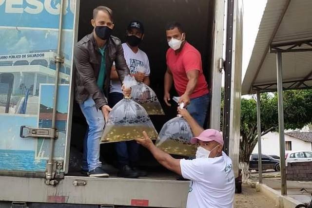 Produtores rurais de Jaguaquara recebem 100 mil alevinos