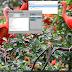 LG G6 G600L FRP | LG G6 G600L Tài Khoản Gmail