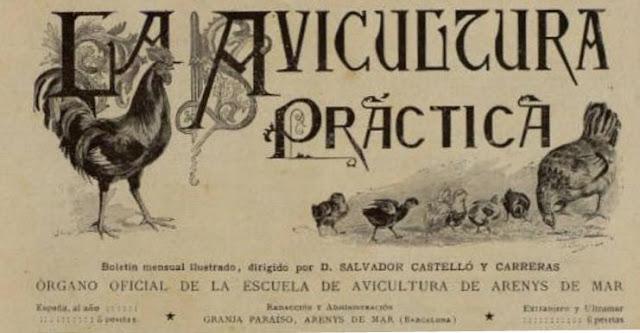 Cabecera de La Avicultura Práctica, boletín mensuel editado en Arenys de Mar