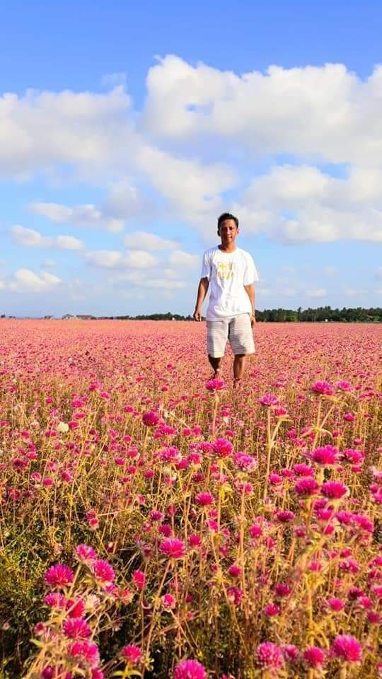 flower field nuse island