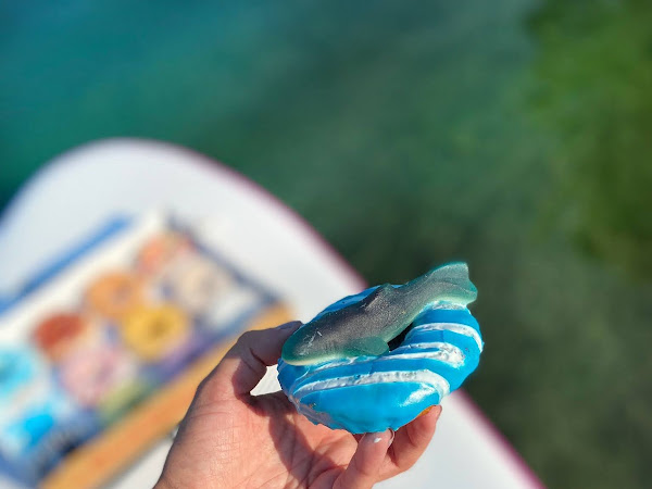 Take a Bite Out of Shark Week with Duck Donuts