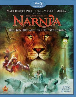 The Chronicles of Narnia: The Lion the Witch and the Wardrobe 2005 BRRIP Hindi Dubbed Dual 300mb