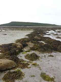 Tidally submerged field wall, Samson, Scilly Isles
