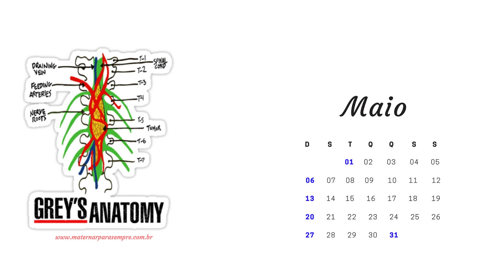 e para facilitar criei um link com um pasta com todos os calendrios ms a ms e s fazer o download