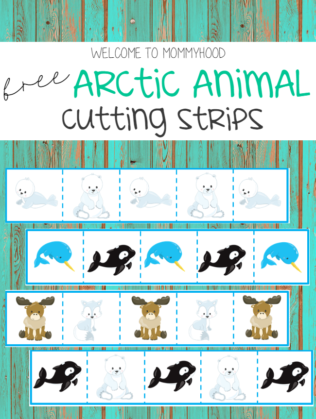 Montessori activities: Arctic themed cutting strips for preschoolers by Welcome to Mommyhood, #montessori, #montessoriactivities, #preschool, #preschoolactivities, #arctictheme