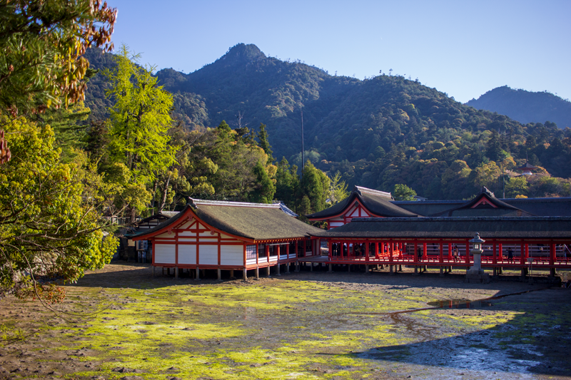 http://www.crazy-kitch.com/2021/01/miyajima.html