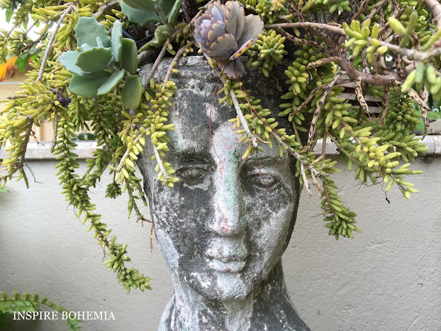 Stone Head Cactus and Succulent Planter - Designer Cactus and Succulent Planters Garden Design Inspire Bohemia - Miami and Ft. Lauderdale Succulent Business