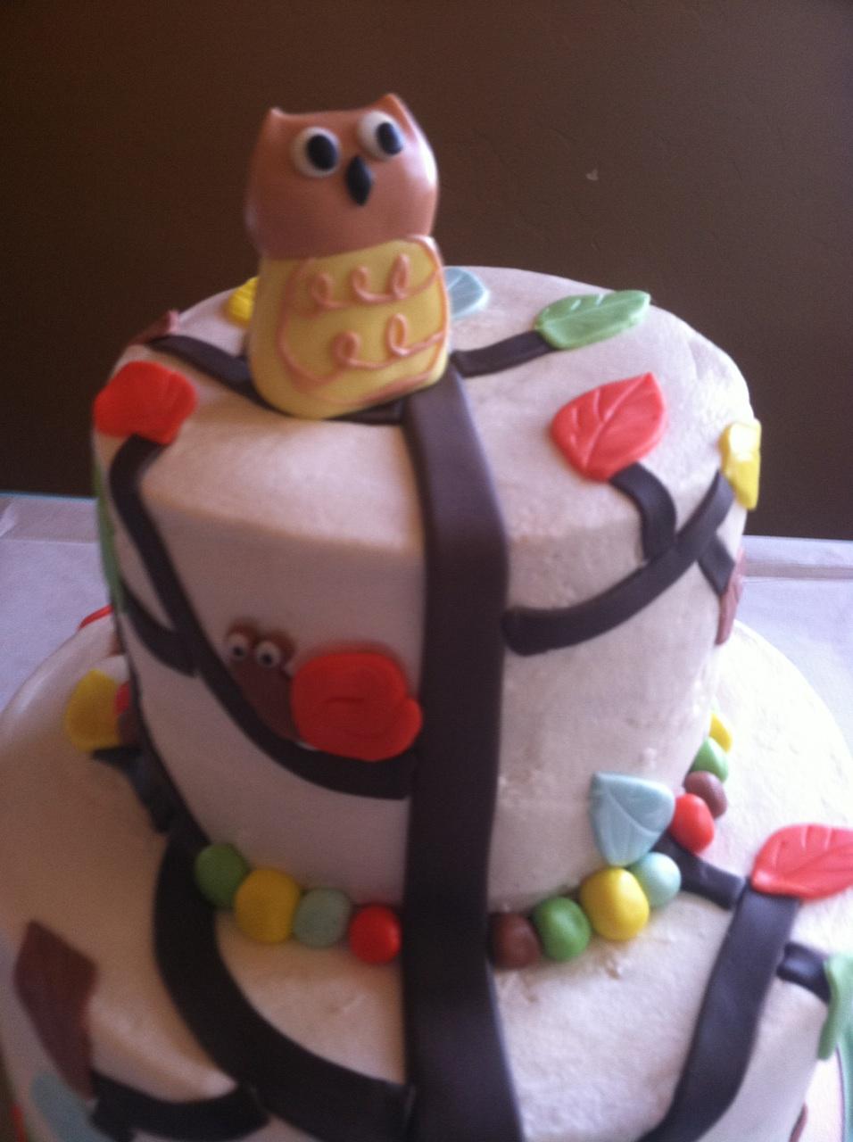 Cat S Cake Creations Quot Arbor Friends Quot Owl Baby Shower Cake