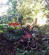 Alta Floresta – Polícia Militar recupera motocicleta roubada, após informações anônimas