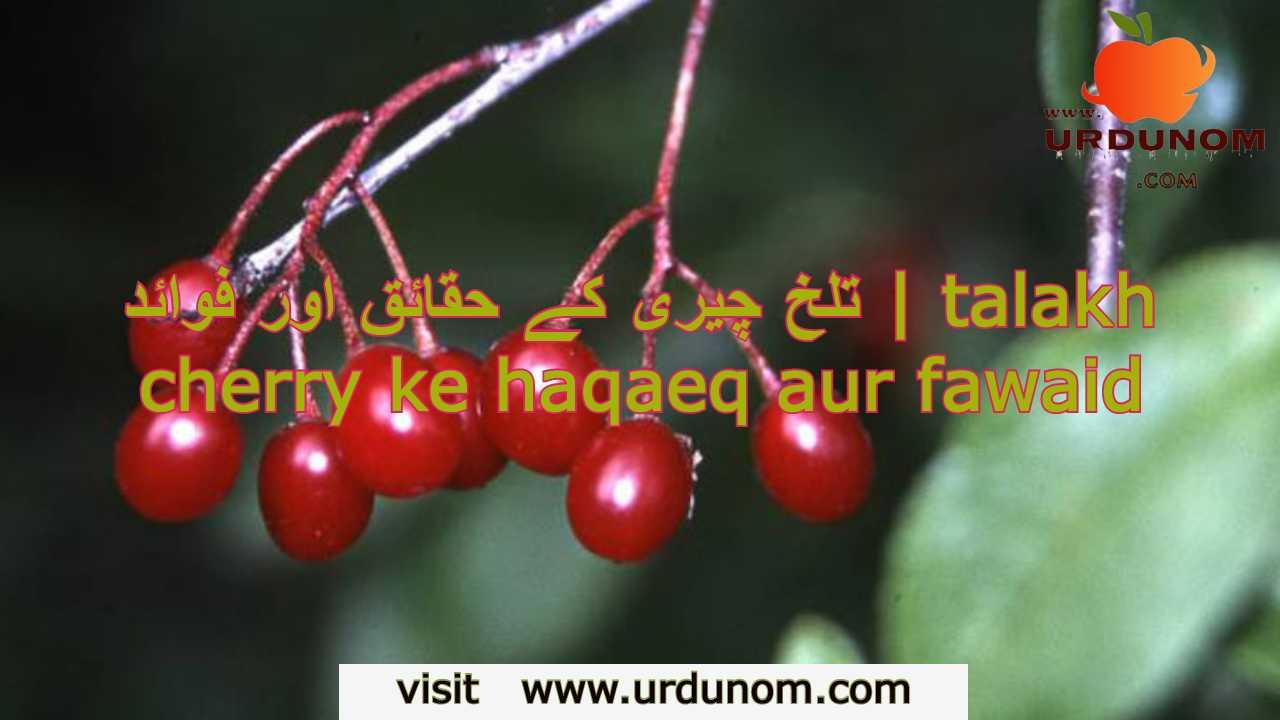 تلخ چیری کے حقائق اور فوائد | talakh cherry ke haqaeq aur fawaid
