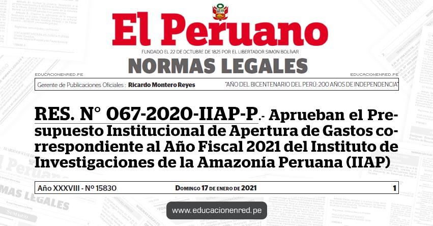 RES. N° 067-2020-IIAP-P.- Aprueban el Presupuesto Institucional de Apertura de Gastos correspondiente al Año Fiscal 2021 del Instituto de Investigaciones de la Amazonía Peruana (IIAP)