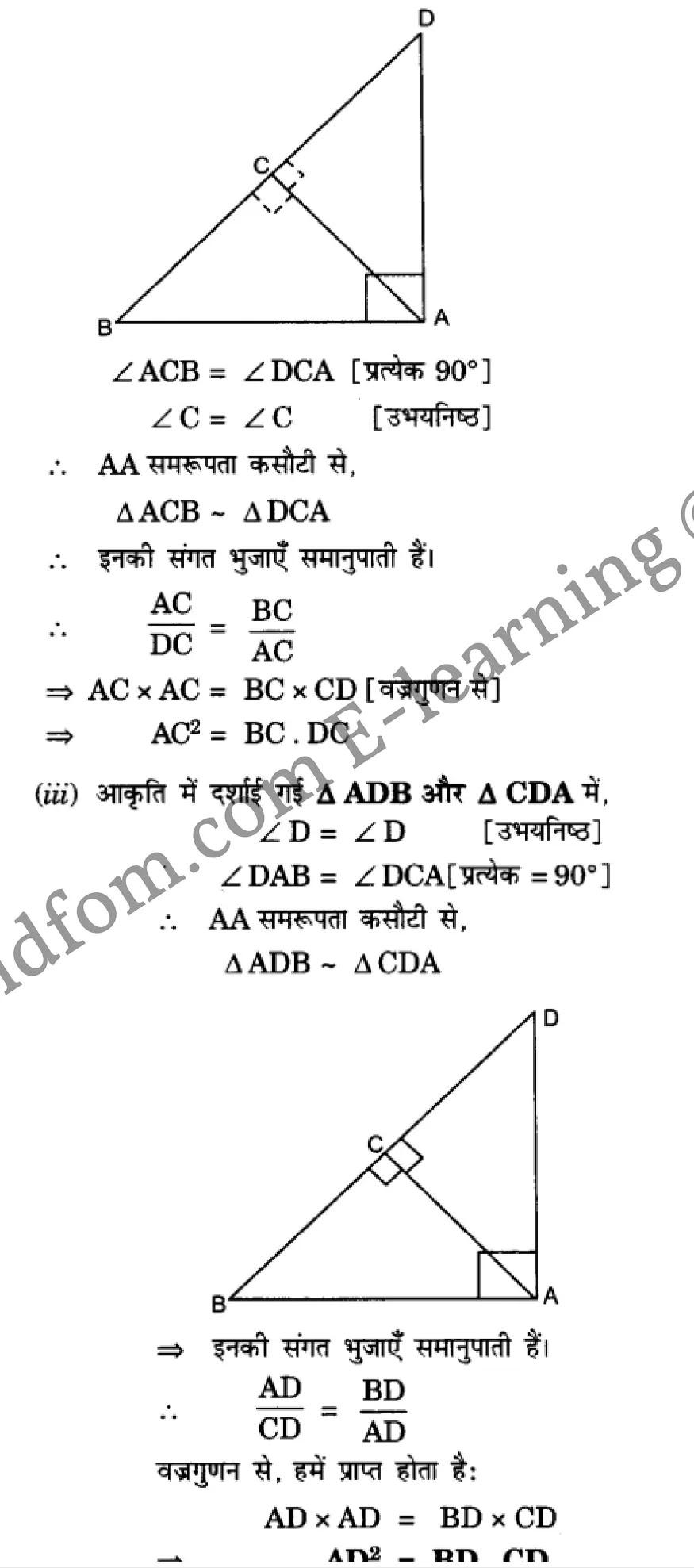 class 10 maths chapter 6 hindi medium 42