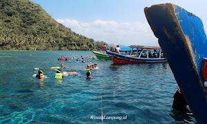 aktivitas snorkeling dalam paket open trip pahawang