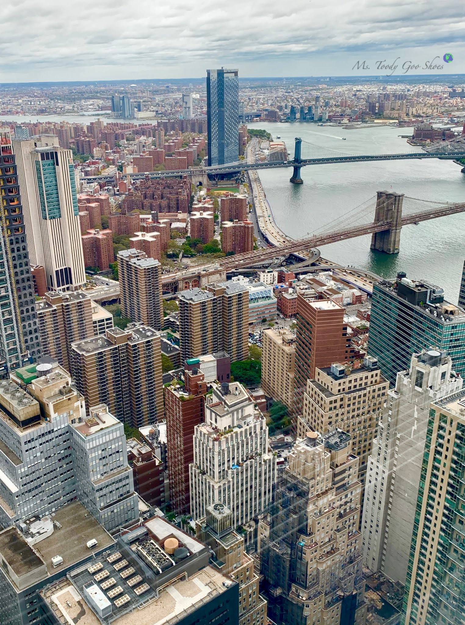 Skyline Views From Manhatta Restaurant New York City- Ms. Toody Goo Shoes