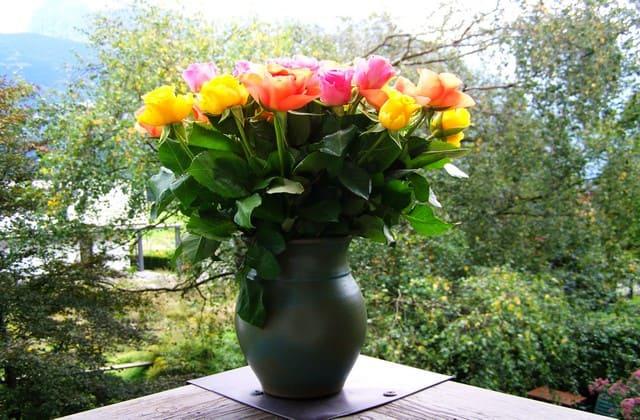 Kamu harus memilih pot yang tepat, sesuai dengan bentuk dan jumlah mawar