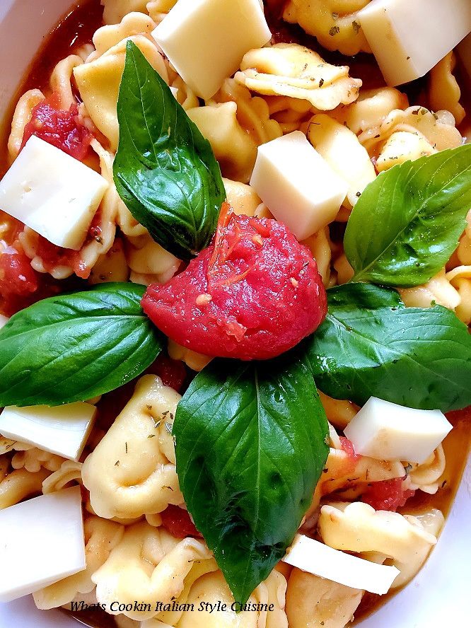 this is a tortellini salad with cheese in the pasta with fresh basil and tomato