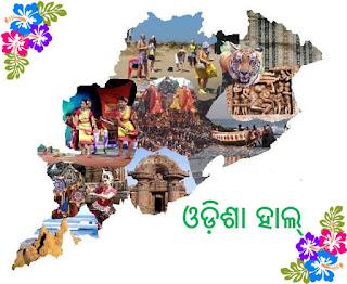 Odisha's News Web Portal, News Website