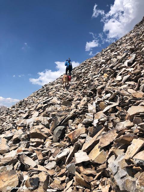 Hiking to Mt.Belknap Tushar Mountains, Utah