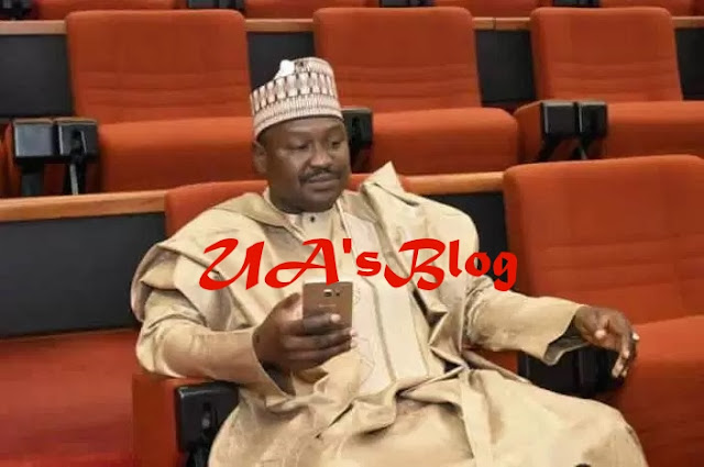 Buhari no longer in charge, cabal plotting Saraki's removal – Senator Misau