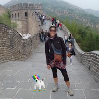 El perro arcoíris sonríe en Cice posa en la Muralla China con una turista