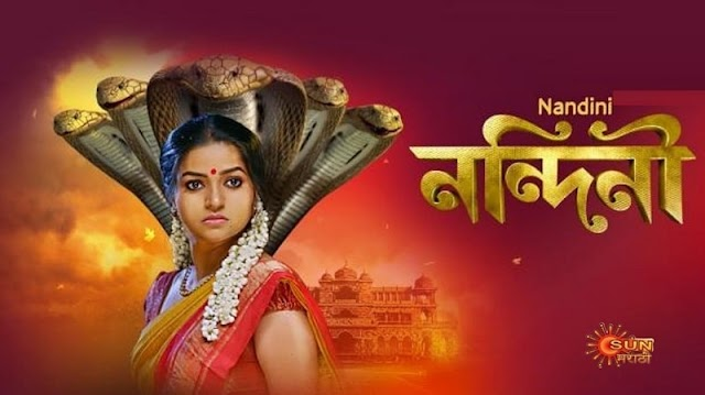 Sun Marathi channel available Channel Number 91