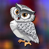 AvmGames Elf Owl Escape