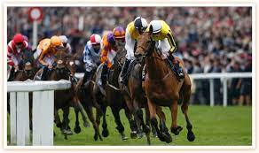 Types Of Horse Racing Bets