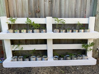 Painted upcycled pallet with plants in the garden