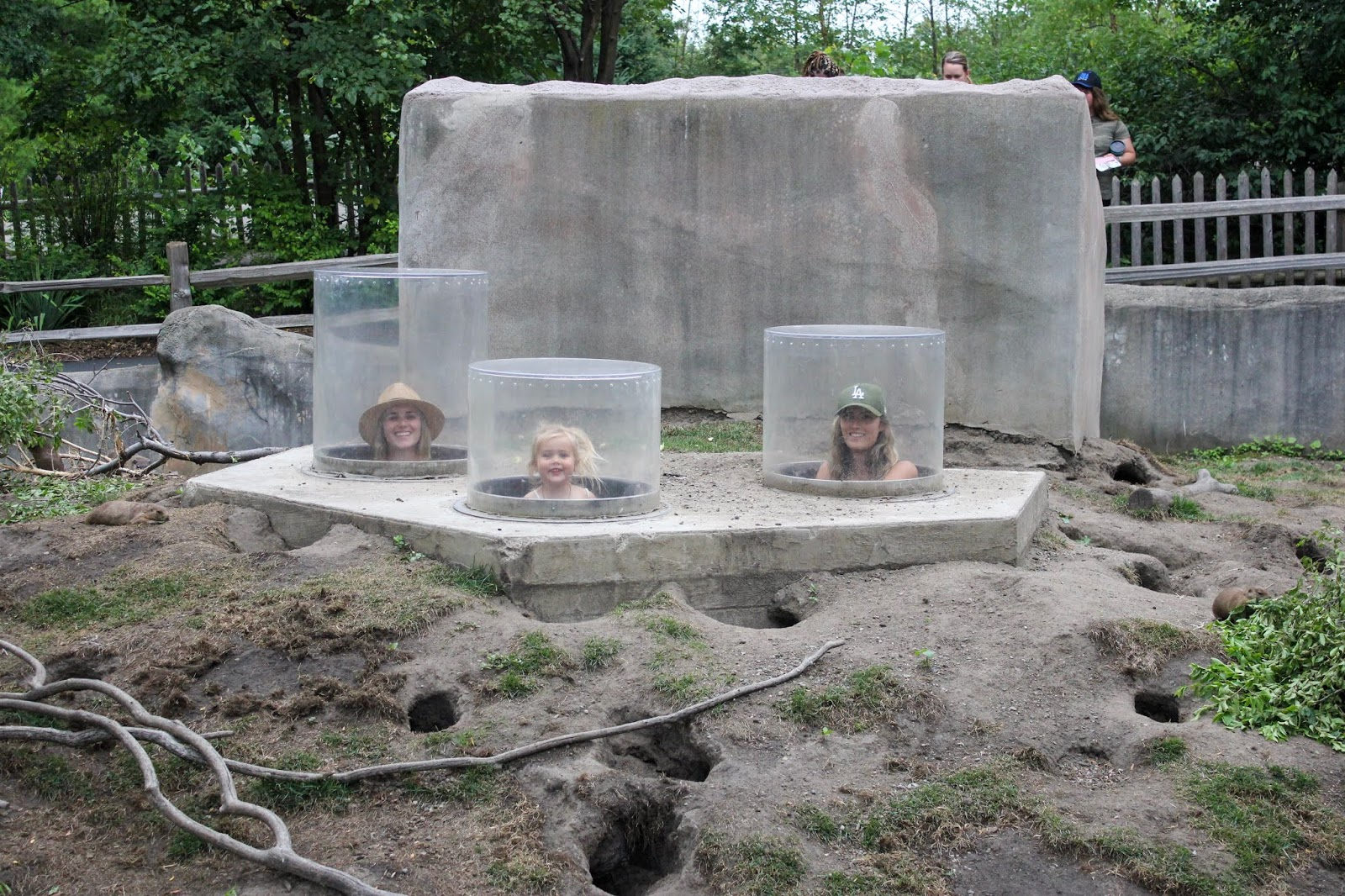 family friendly activities at the detroit zoo