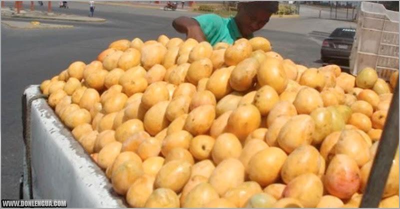 El Mango se convierte en el alimento más barato que se puede comprar en Venezuela