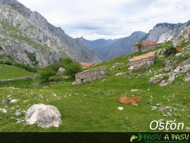 Ostón, en Picos de Europa