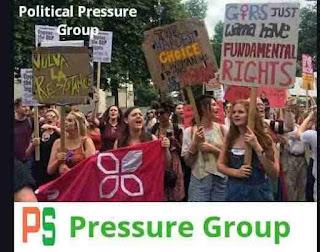 राजनीतिक दबाव समूह, भारत में दबाव समूह, Political Pressure Group